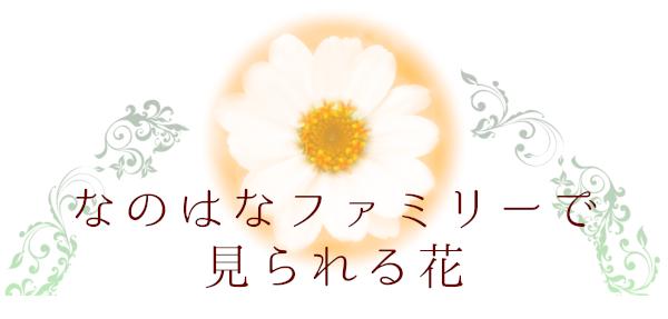 なのはなファミリーで見られる花